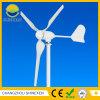 windbetriebener Generator der horizontalen Mittellinien-500W