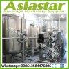 trattamento delle acque della pianta del sistema del RO di osmosi d'inversione 10000L/H con il sistema di trattamento preparatorio