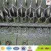 鶏の家禽の鉄条網のHexの網