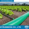 Hy a produit le boyau de débit de boyau de PVC Layflat, boyau de pipe de PVC