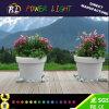 Acesa acende o LED de jardim inicial Flower Pot