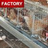 Le meilleur vendant une cage de batterie de poulet de couche de type pour le Nigéria