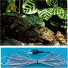 Imperméable et résistante câble chauffant Reptile