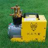 compressore d'aria portatile elettrico ad alta pressione di Pcp della pompa di aria di 300bar 4500psi