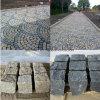 Cobble van het Graniet van de goede Kwaliteit Steen met Gespleten/Gespleten in Zwart/Geel voor Plein