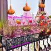 Chinesische 48W E27 LED Pflanze wachsen für Gewächshaus hell