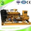 20-90kw天燃ガスの発電機セットの製造の供給