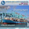 20 ' 시카고, Lllinois에 /40'40 hq Container Sea Freight From 중국