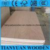 Mejor comercial de madera contrachapada/12mm Fancy Tablero contrachapado para muebles