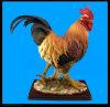 Figurine da torneira de Polyresin (SH06)