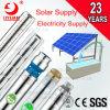 L'énergie solaire de 6 pouces Ss moteur électrique de pompe submersible stade multiples