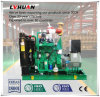 Gruppo elettrogeno generatore di forza motrice del gas del materiale di riporto dei rifiuti bio- da vendere 30 chilowatt---600 chilowatt