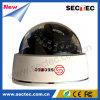 CCTV Infrared Dome Camera с 1/3 '' snoy CCD