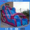 Haut de la qualité thème Animal Inflatable Faites glisser les jouets pour enfants