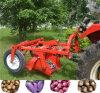 Usine de la transmission d'alimentation de la récolte de pommes de terre du tracteur