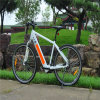 Alemania 700c Electric Mountain bicicleta con la batería Ocultos Ebike