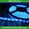 12V SMD 5050 Flexible LED Strip Light