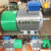 Alto rendimiento del generador de 40kw 60 rpm Se utiliza para la turbina de viento