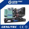 Электрические генераторы силы 45kVA Genlitec с альтернатором Лерой Somer