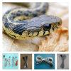 Reptil-Heizkabel des Großverkauf-6m