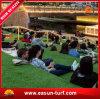 最もよい価格の普及したスポーツの中国からの総合的な泥炭の芝生