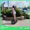 Form Transportation 42V Battery Electric Chariot