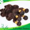 Tecelagem humana Charming brasileira do cabelo do Virgin de Brown