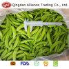 Qualidade superior as ervilhas sugar snap congelados
