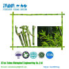 100% natürlicher GemüseRUSS CAS Nr.: 1333-86-4