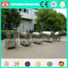 Berufsfertigung 2016 elektrisch/rostfreie Soyabohne-Nuts Bratmaschine des Gas-304