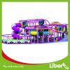 Fantasia Color Luxury Indoor Amusement Playground com Slides
