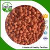 Sulfato do potássio do fertilizante da concessão de 50% (pó ou granulados)