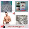 Spier die Steroid Grondstof van Cypionate van het Testosteron van het Poeder bouwen