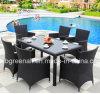 セットを食事する屋外の庭のテラスの家具の表および椅子