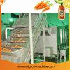 Birnen-Püree-aufbereitende Maschine