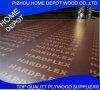 El color 18m m de Brown película de la base del álamo de 4 ' *8' hizo frente a la madera contrachapada