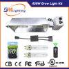 315W de saída dupla crescer Kit de Luz a poupança de energia 630W Kit de Luz de crescer de LED para o crescimento da planta crescer Kit de Luz com baixa freqüência de alta qualidade