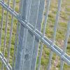 中国の製造業者からの高品質及び安い価格の三角形によって溶接される塀