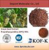 Heet verkoop het Uittreksel van het Zaad van de Druif, Proanthocyanidins (Portlandcement) 90%, 95%, 98%