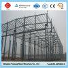 Taller de la estructura de acero y almacén y edificio hermosos