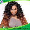 Верхние волосы девственницы ранга 100% качества 7A Unprocessed людские малайзийские