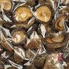 Высушенный гриб (японская лоснистая поверхность)