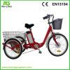 мотоцикл груза колеса 36V 250W 3 электрический для взрослых