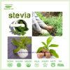 La FDA ha certificato la polvere Ra40%-Ra99% dell'estratto di Stevia