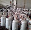 Vertikaler Gärungsbehälter mit 600L 3