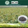 Il carbonio del fertilizzante di conservazione di acqua di Kingeta ha basato il fertilizzante composto NPK 28-6-6