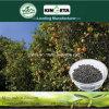 Il carbonio del fertilizzante dell'acido pirolegnoso di Kingeta ha basato il fertilizzante composto NPK 18-6-18