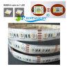 precio de fábrica resistente al agua Super brillante 4 Color en uno de los LED 5050 TIRA DE LEDS RGBW 24V.