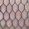 良質Galvanized/PVC上塗を施してあるGabionボックス金網(工場)