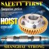 Rueda helicoidal de accionamiento de acero y el engranaje del motor de la grúa de construcción